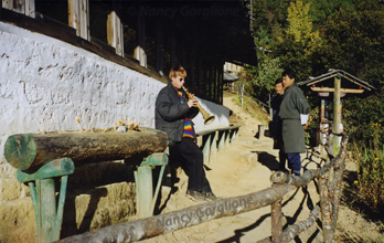 Gorglione On the way to Takstang Monastery in Pero Bhutan